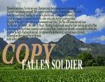 FALLEN SOLDIER_edited-2